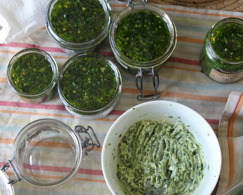 Pesto et beurre d'ail des ours - recette oumbi